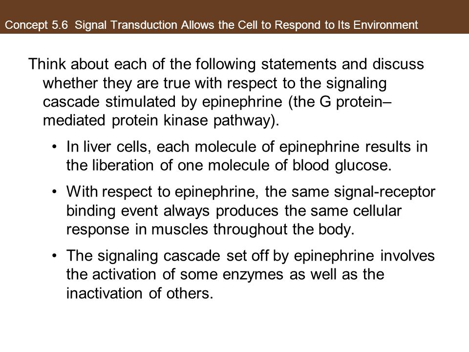 Concept 5.6 Signal Transduction Allows the Cell to Respond to Its Environment