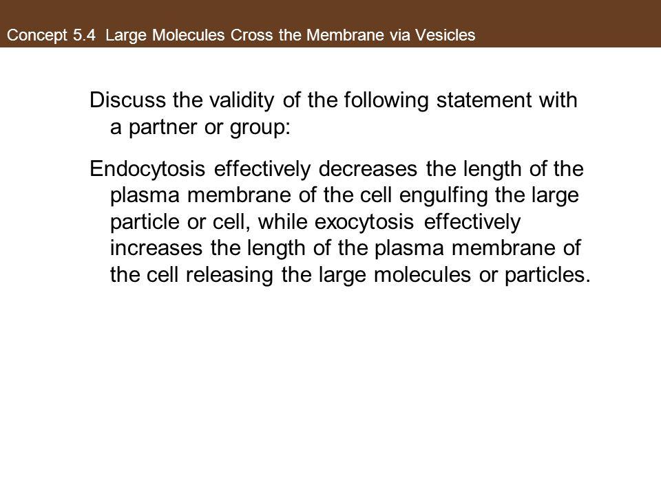 Concept 5.4 Large Molecules Cross the Membrane via Vesicles