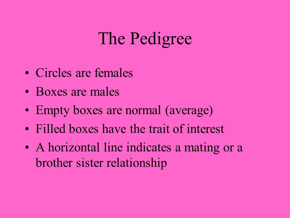 The Pedigree Circles are females Boxes are males