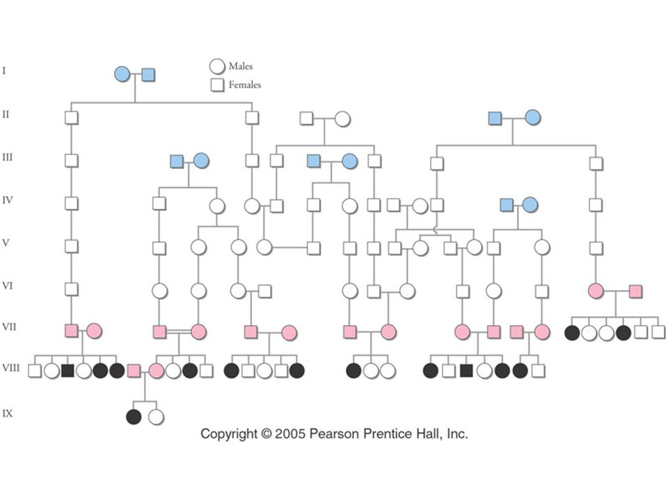 Figure: 20-07 Title: The inheritance of cystic fibrosis is shown in this pedigree. Caption: