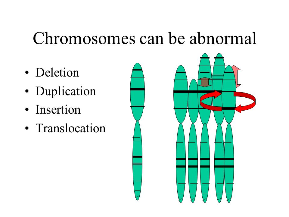 Chromosomes can be abnormal