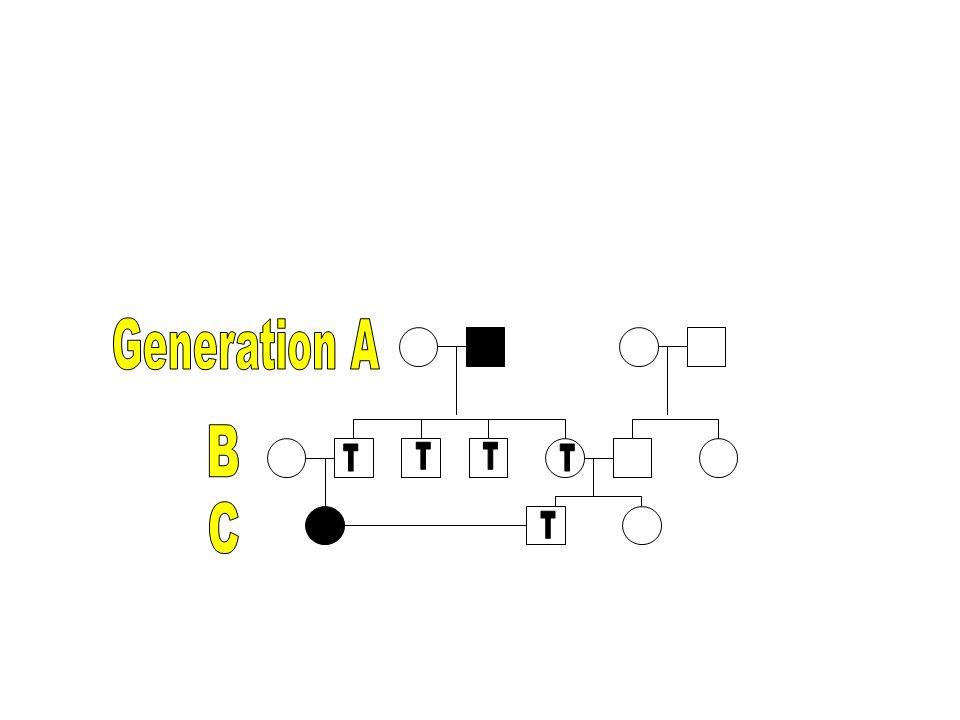 Generation A B C T