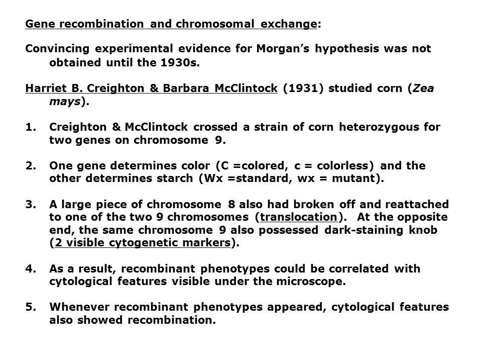 Gene recombination and chromosomal exchange: