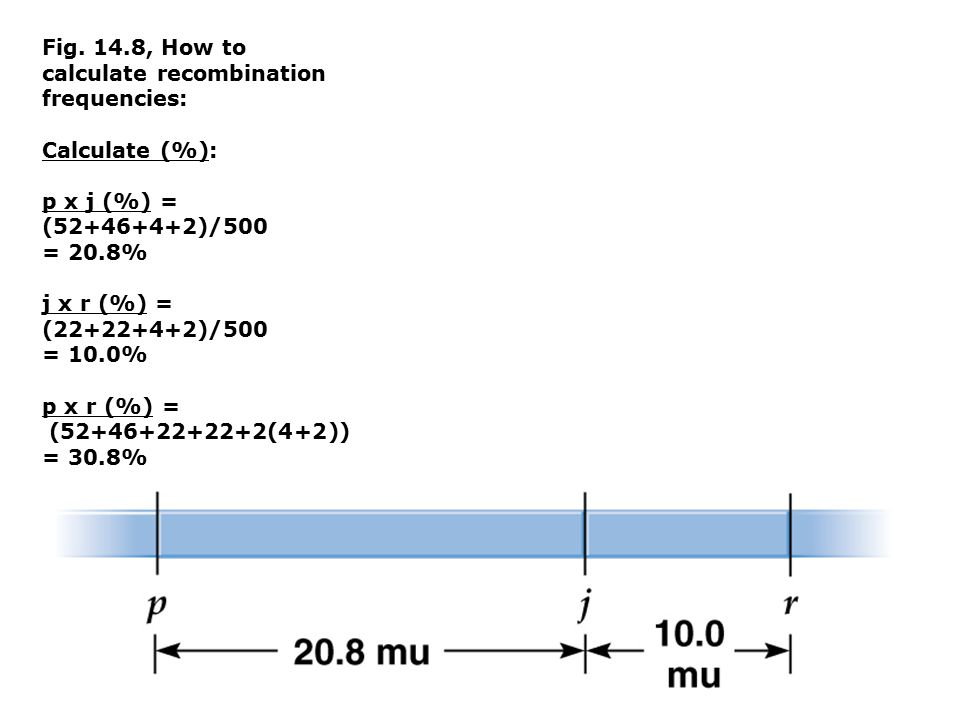 Fig. 14.8, How to calculate recombination frequencies:
