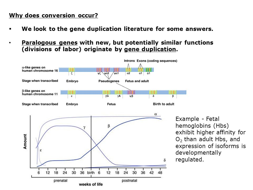 Why does conversion occur