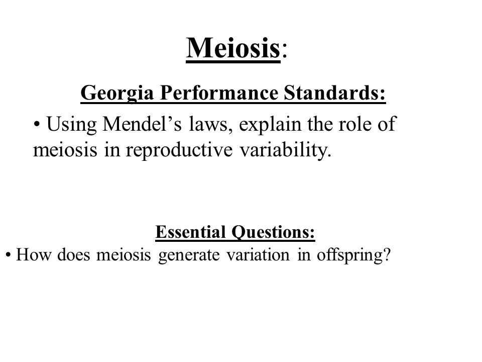 Georgia Performance Standards: