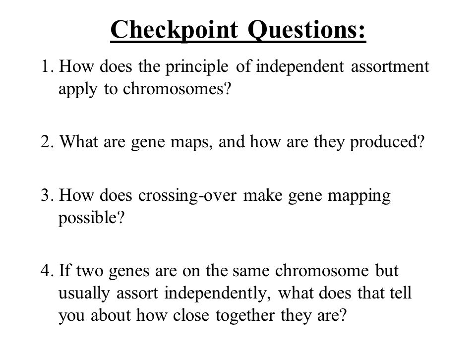 Checkpoint Questions: