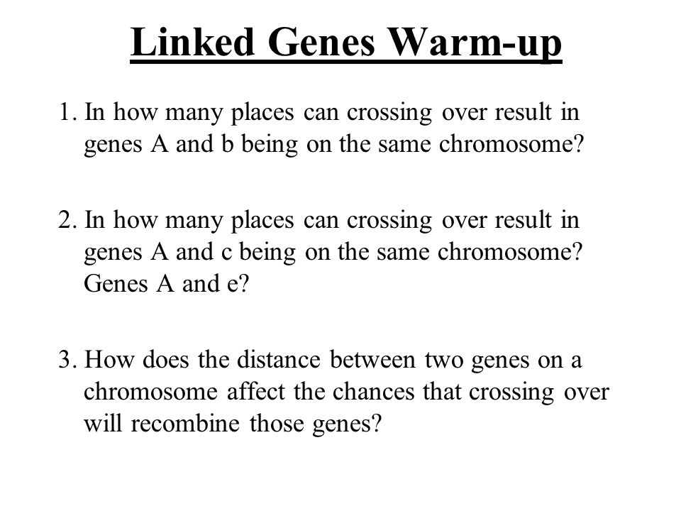 Linked Genes Warm-up 1. In how many places can crossing over result in genes A and b being on the same chromosome