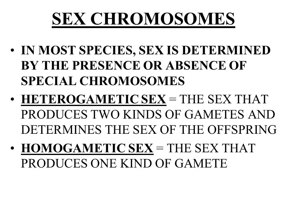 SEX CHROMOSOMES IN MOST SPECIES, SEX IS DETERMINED BY THE PRESENCE OR ABSENCE OF SPECIAL CHROMOSOMES.