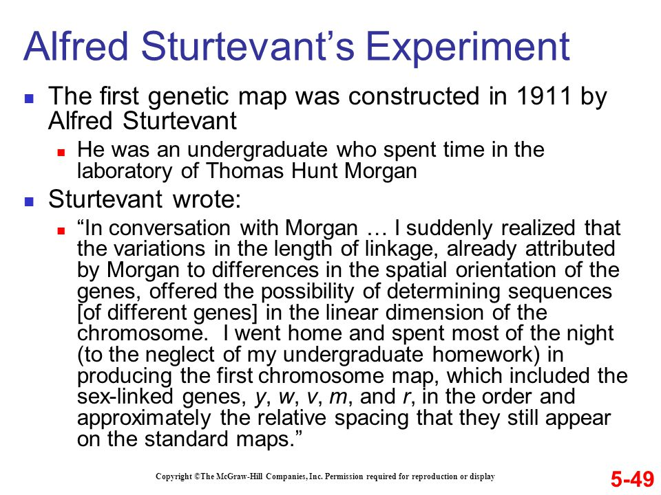 Alfred Sturtevant's Experiment