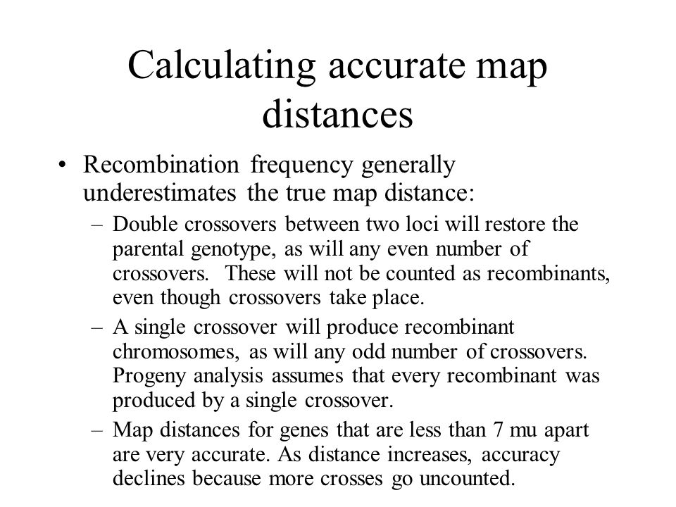 Calculating accurate map distances