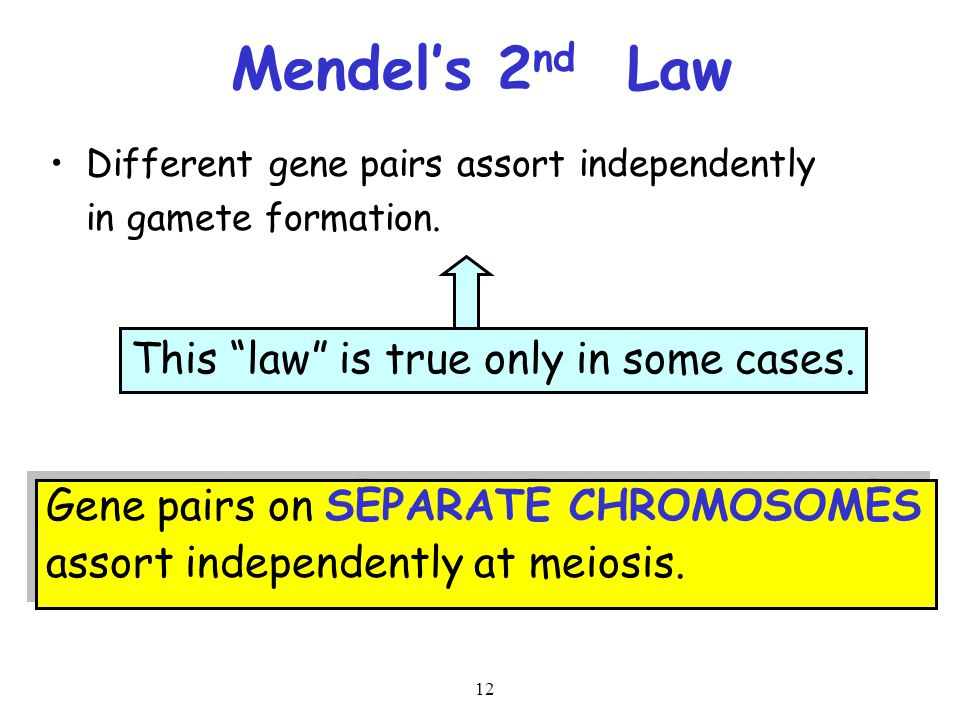 Mendel's 2nd Law This law is true only in some cases.