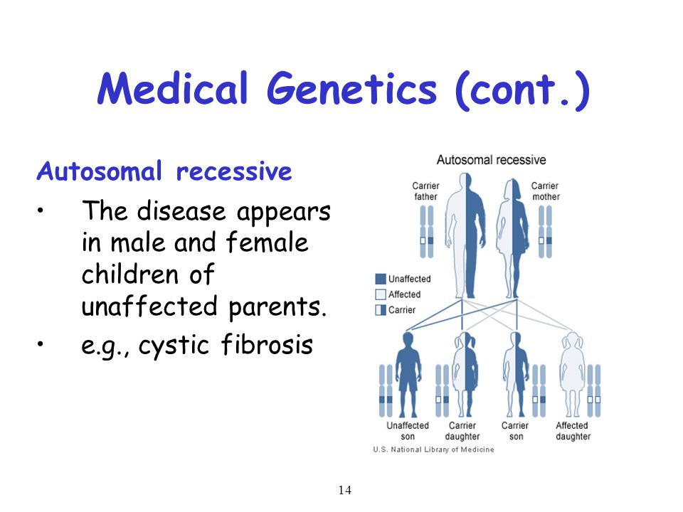 Basic Concepts in Genetics References: - ppt video online ...