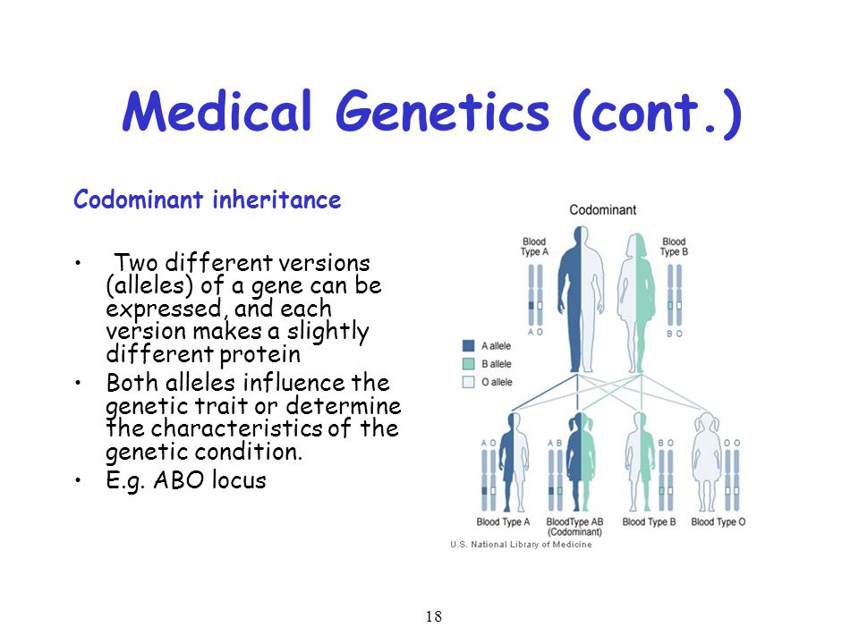 Medical Genetics (cont.)