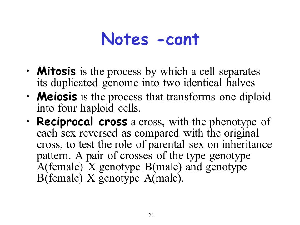 Notes -cont Mitosis is the process by which a cell separates its duplicated genome into two identical halves.