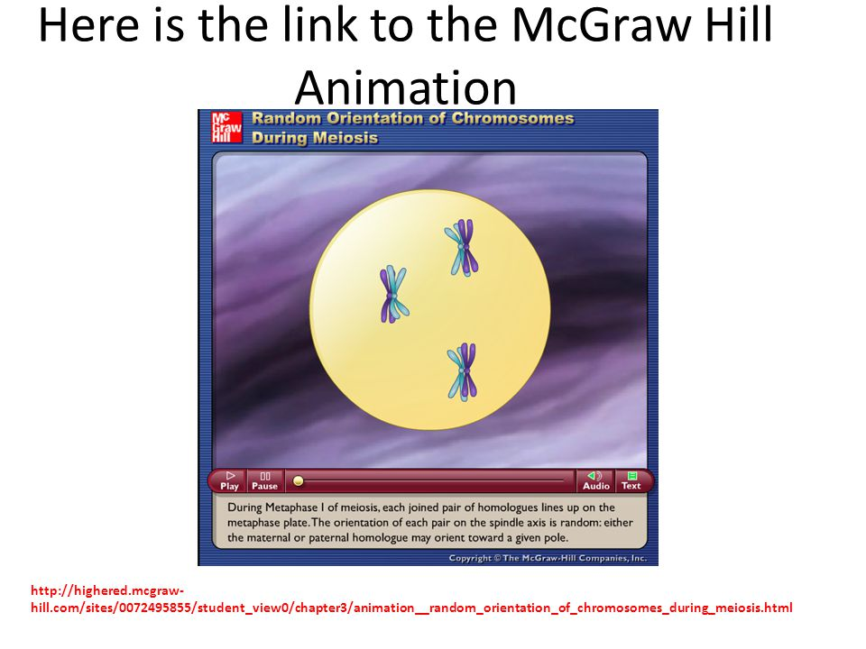 Here is the link to the McGraw Hill Animation