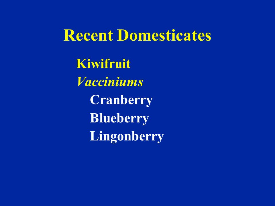 Recent Domesticates Kiwifruit Vacciniums Cranberry Blueberry