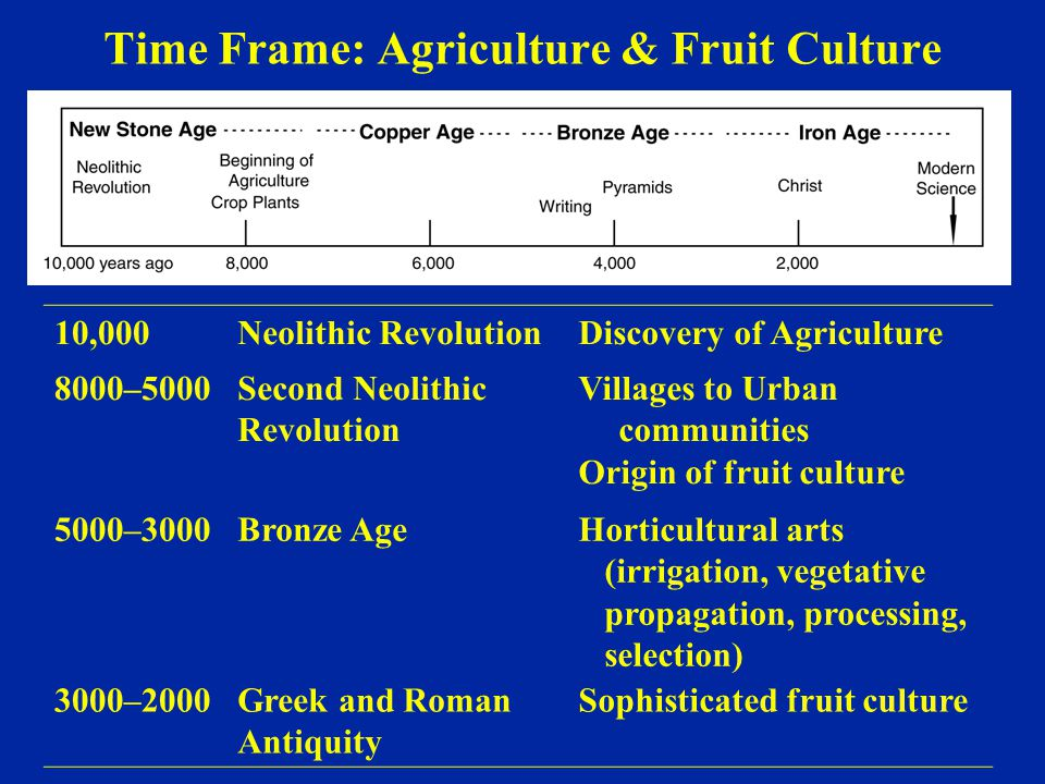 Time Frame: Agriculture & Fruit Culture