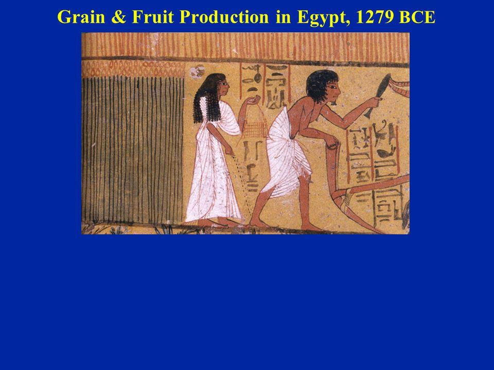 Grain & Fruit Production in Egypt, 1279 BCE