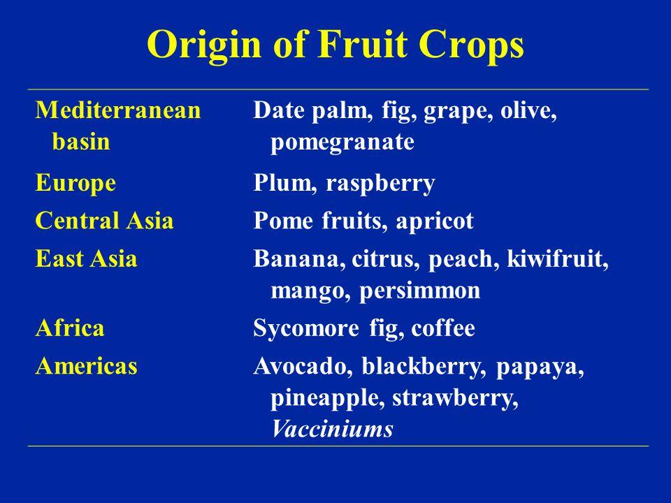 Origin of Fruit Crops Mediterranean basin