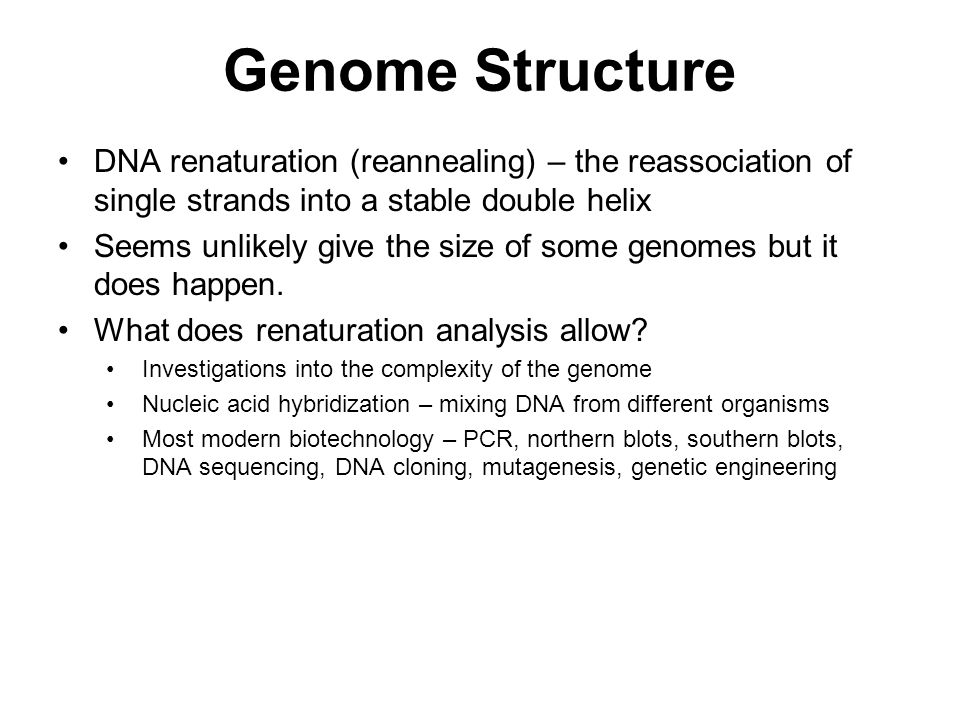 Genome Structure DNA renaturation (reannealing) – the reassociation of single strands into a stable double helix.