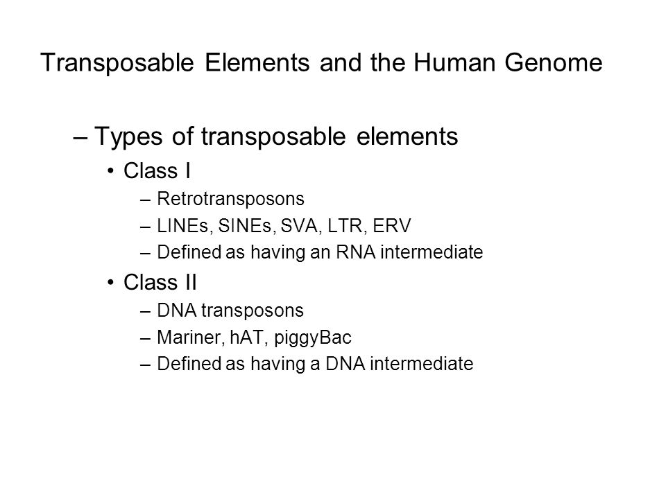 Transposable Elements and the Human Genome