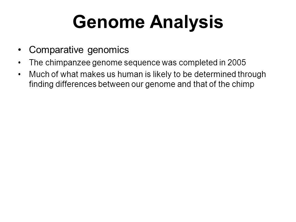 Genome Analysis Comparative genomics