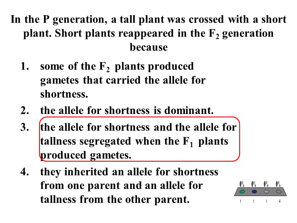 In the P generation, a tall plant was crossed with a short plant