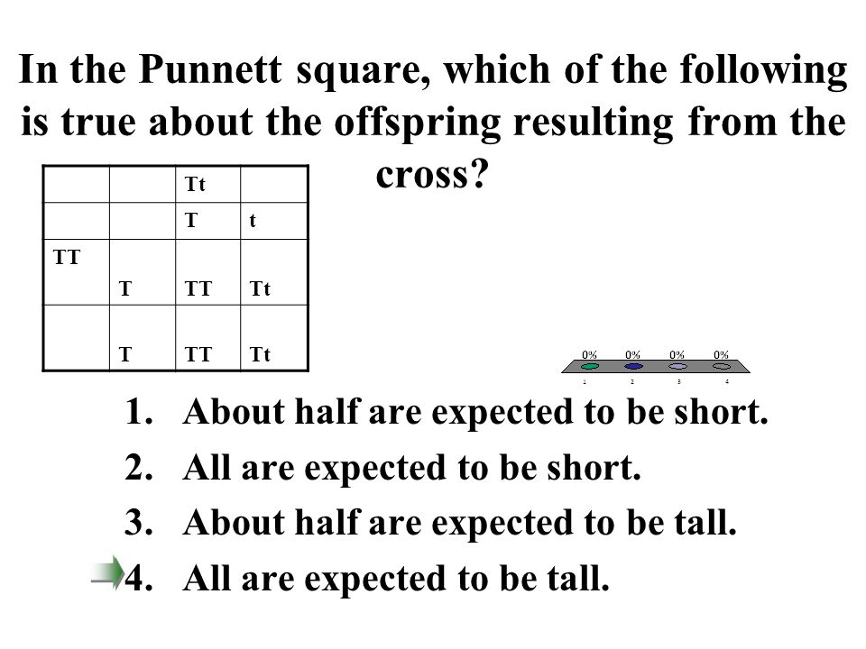 In the Punnett square, which of the following is true about the offspring resulting from the cross