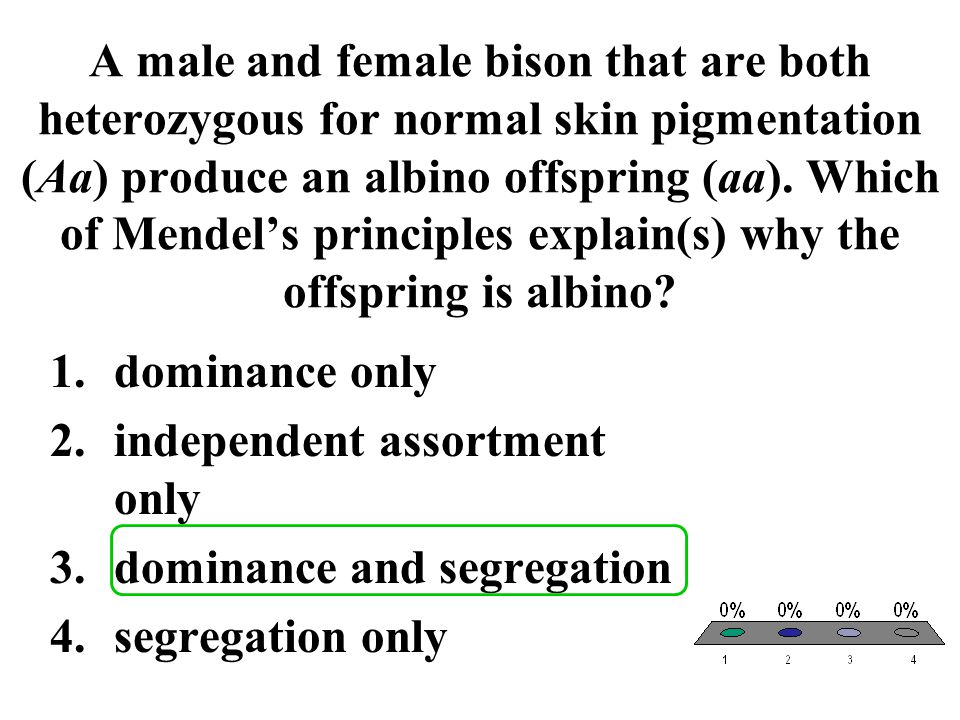A male and female bison that are both heterozygous for normal skin pigmentation (Aa) produce an albino offspring (aa). Which of Mendel's principles explain(s) why the offspring is albino