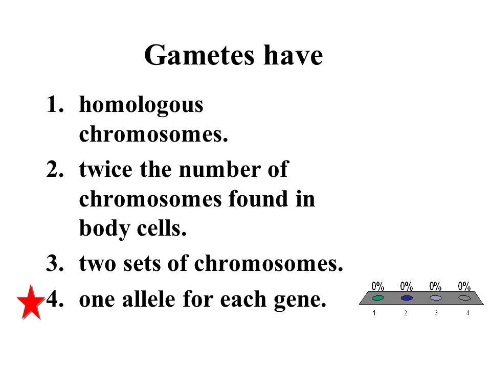 Gametes have homologous chromosomes.