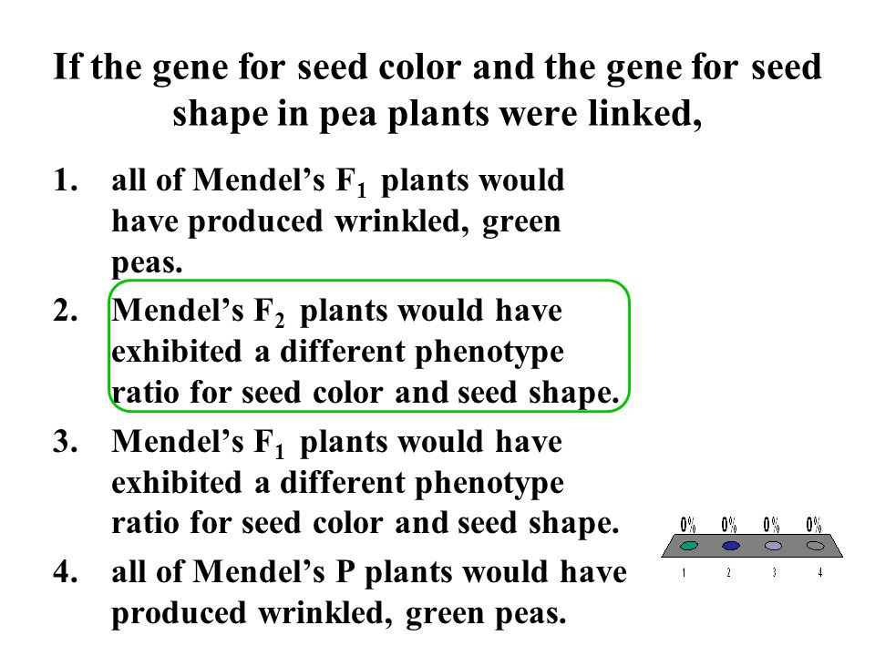 If the gene for seed color and the gene for seed shape in pea plants were linked,