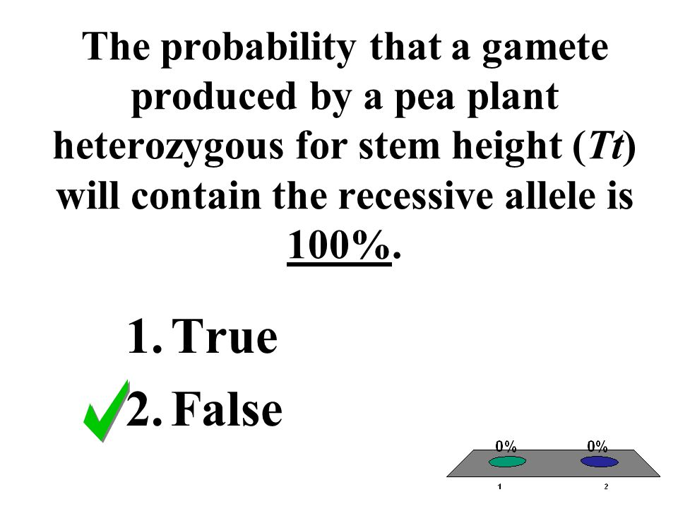 The probability that a gamete produced by a pea plant heterozygous for stem height (Tt) will contain the recessive allele is 100%.