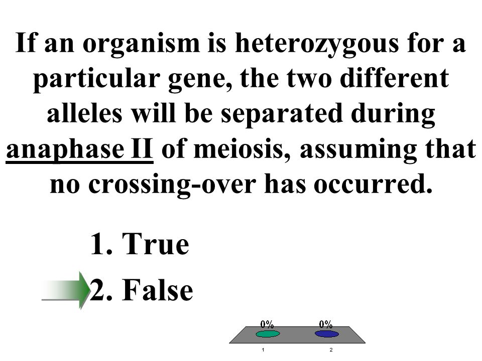 If an organism is heterozygous for a particular gene, the two different alleles will be separated during anaphase II of meiosis, assuming that no crossing-over has occurred.