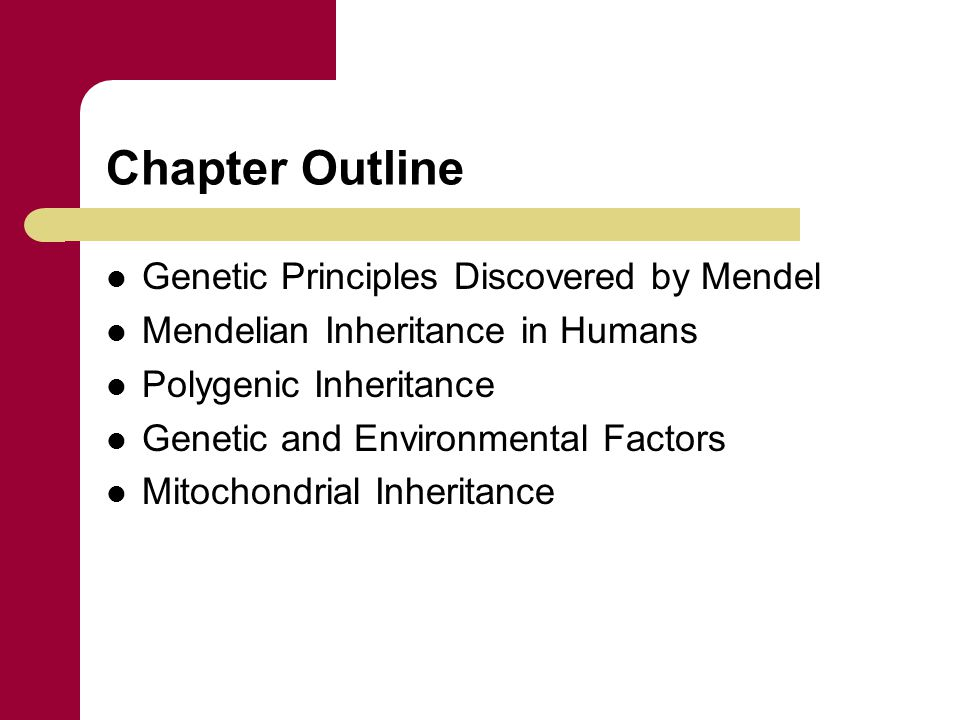 Chapter Outline Genetic Principles Discovered by Mendel