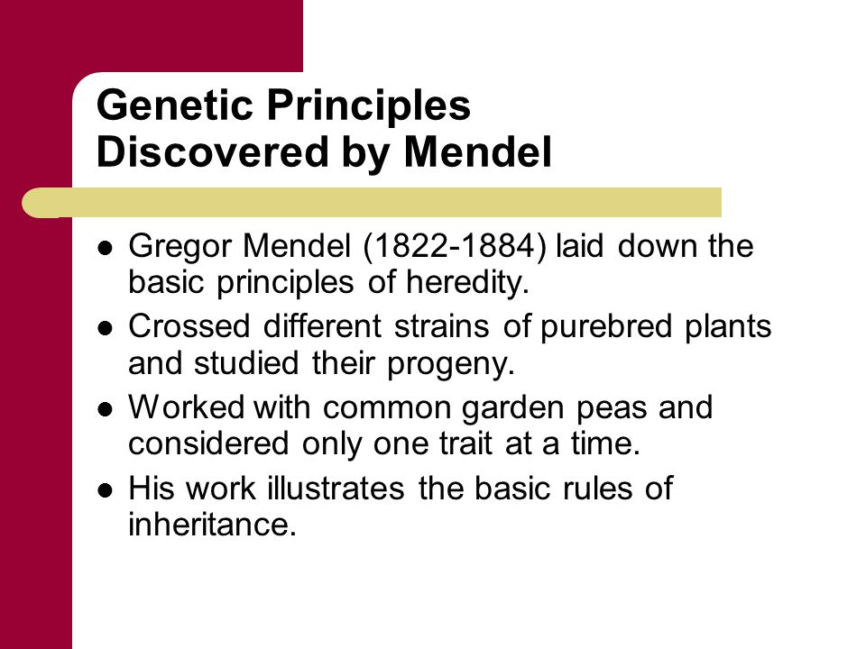 Genetic Principles Discovered by Mendel