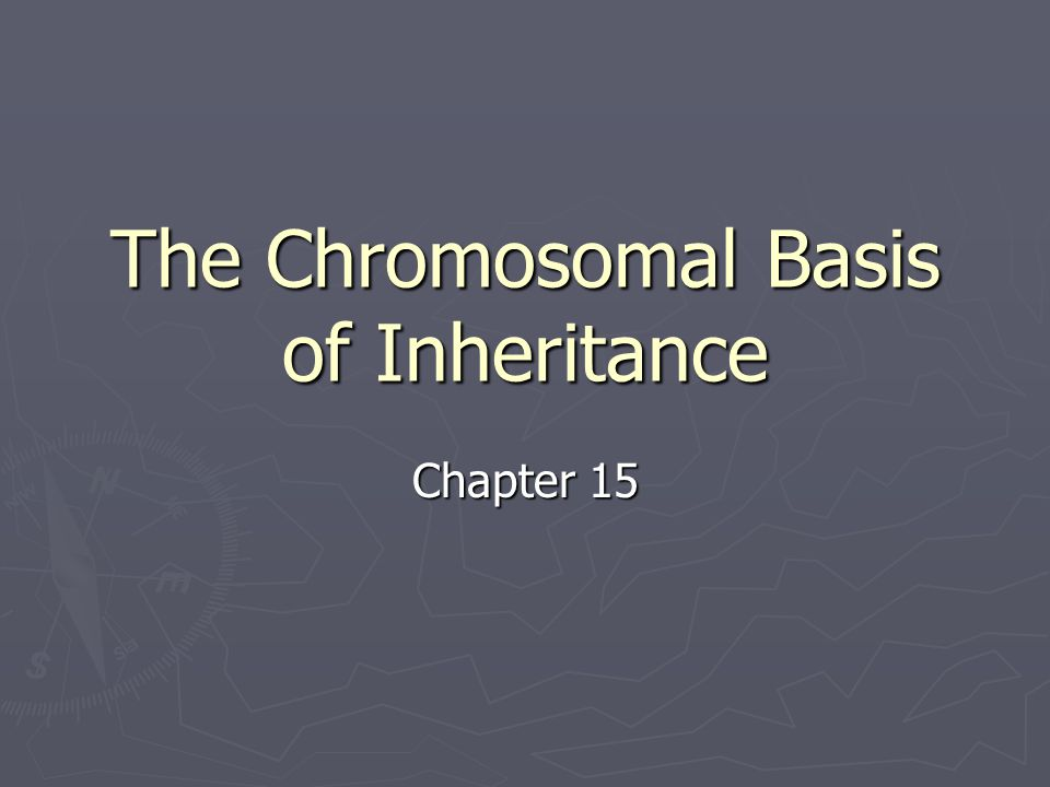 The Chromosomal Basis of Inheritance