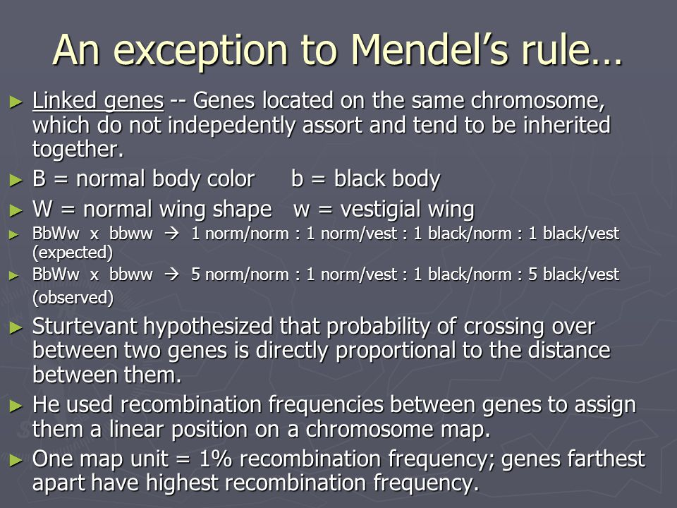 An exception to Mendel's rule…