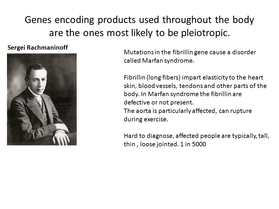 Genes encoding products used throughout the body are the ones most likely to be pleiotropic.