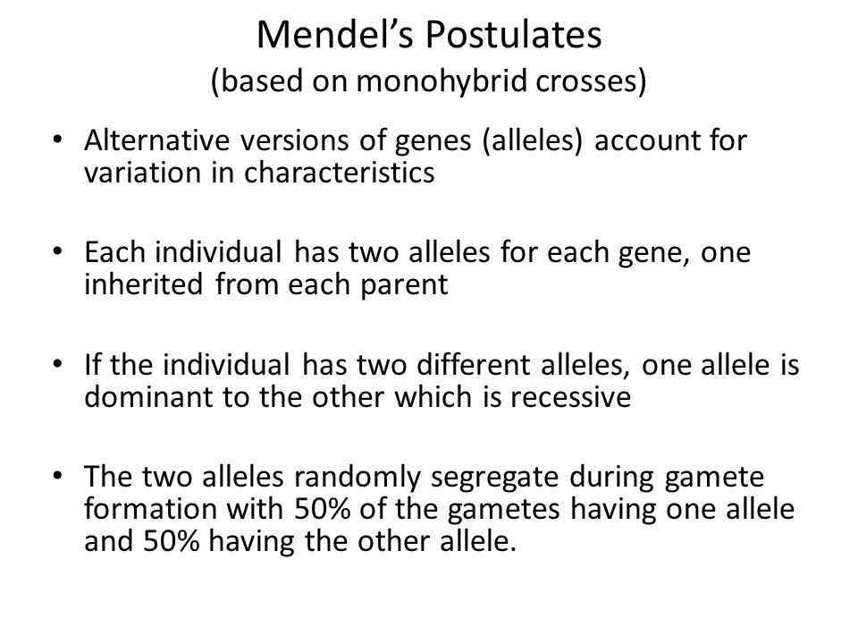 Mendel's Postulates (based on monohybrid crosses)
