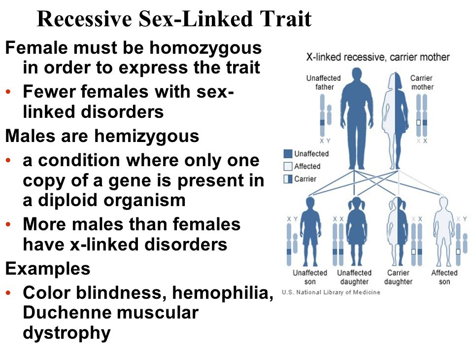 Recessive Sex-Linked Trait