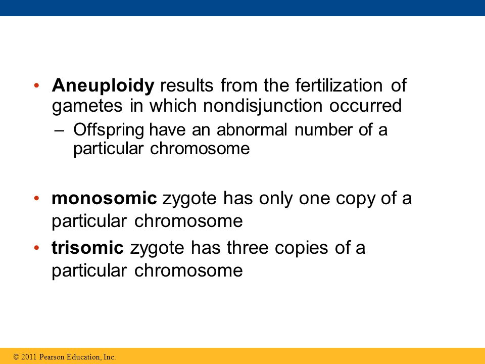 monosomic zygote has only one copy of a particular chromosome