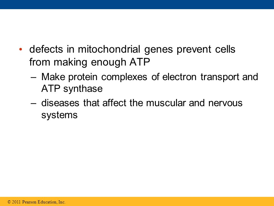 defects in mitochondrial genes prevent cells from making enough ATP