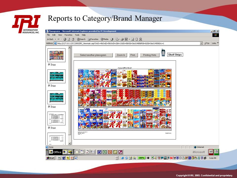 Reports to Category/Brand Manager