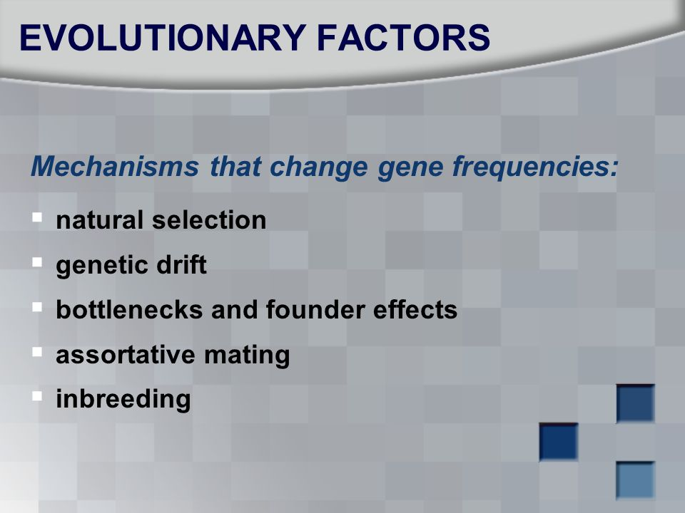 EVOLUTIONARY FACTORS Mechanisms that change gene frequencies:
