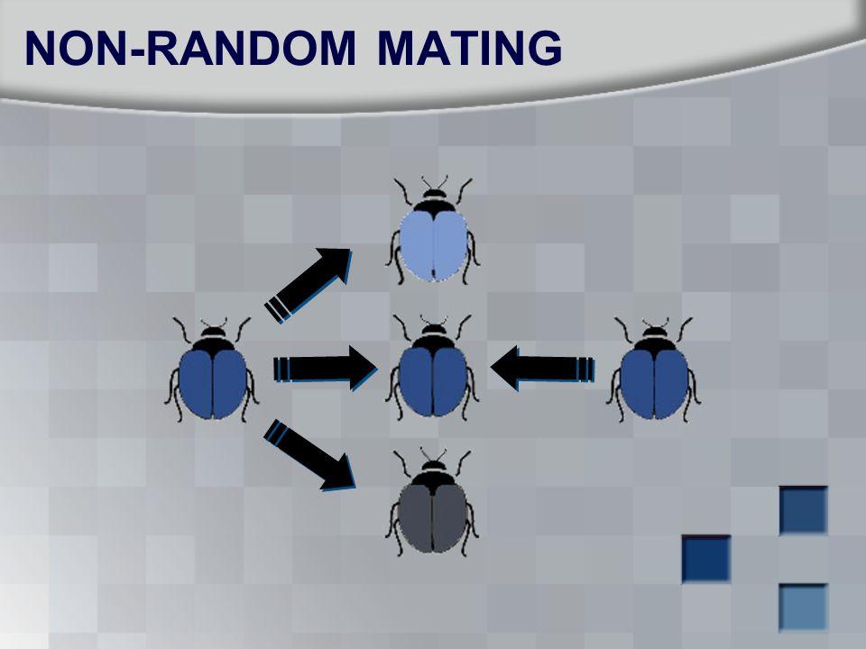 NON-RANDOM MATING