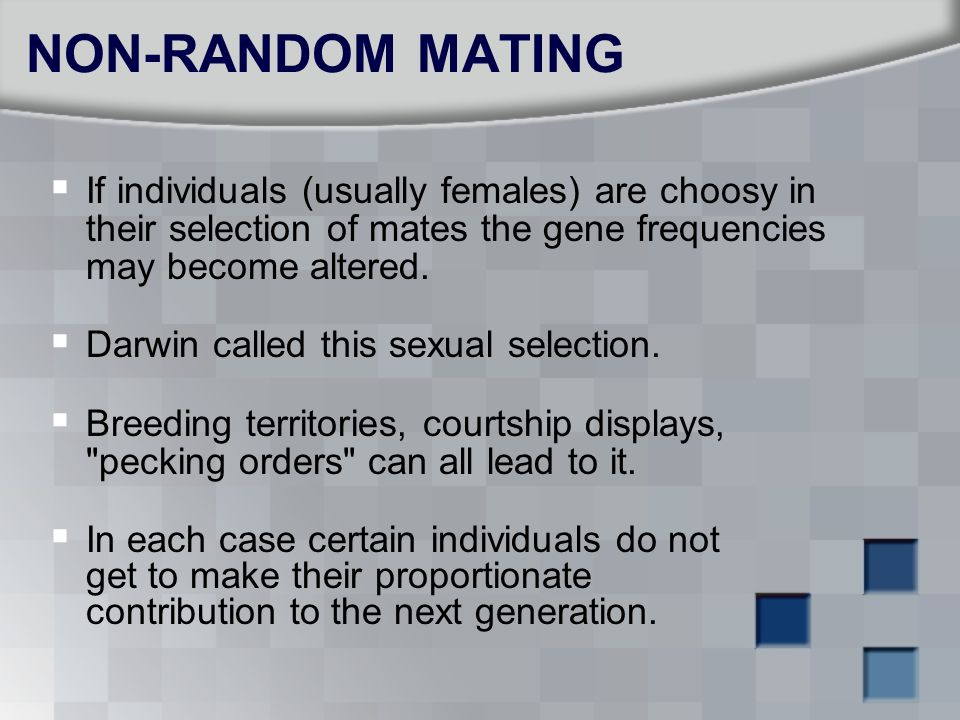 NON-RANDOM MATING If individuals (usually females) are choosy in their selection of mates the gene frequencies may become altered.
