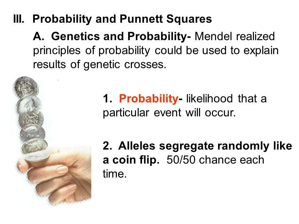 III. Probability and Punnett Squares