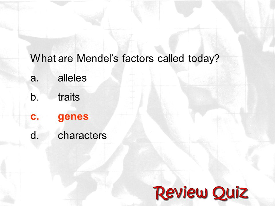 What are Mendel's factors called today