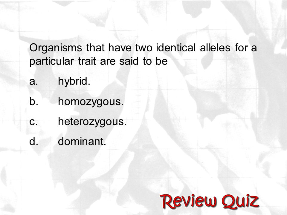 Organisms that have two identical alleles for a particular trait are said to be